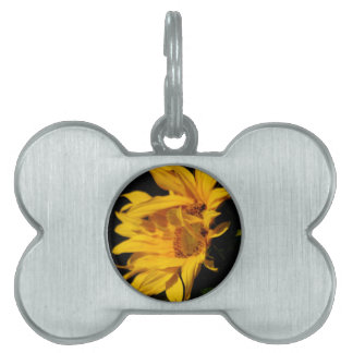 Sunflower and meaning pet name tag