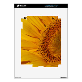 Sunflower and meaning skins for the iPad 2