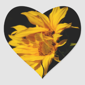 Sunflower and meaning heart sticker