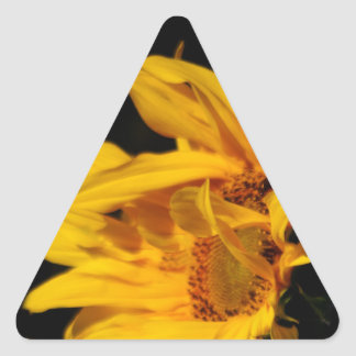 Sunflower and meaning triangle sticker