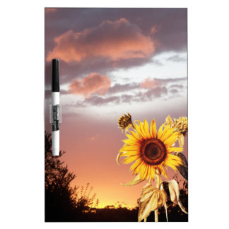 SUNFLOWER AND PINK SUMMER SUNSET Dry-Erase BOARD