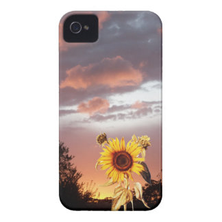 SUNFLOWER AND PINK SUMMER SUNSET iPhone 4 Case-Mate CASE