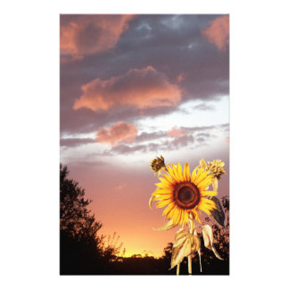 SUNFLOWER AND PINK SUMMER SUNSET STATIONERY