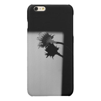 Sunflower and Shadow - Black and White Photograph Glossy iPhone 6 Plus Case