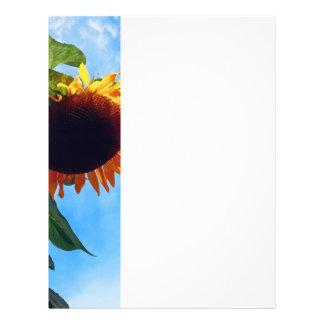 Sunflower and Sky Flyer