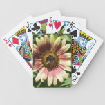 Sunflower and The Green Bee Card Deck