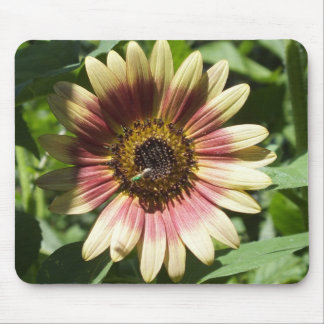 Sunflower and The Green Bee Mouse Pad