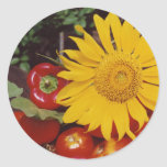 Sunflower and Vegetables - Tomatoes, Red Peppers Round Stickers