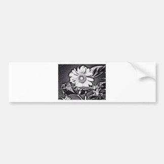 Sunflower at night bumper stickers