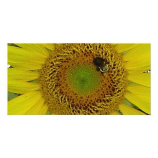 Sunflower Bee Pretty Card