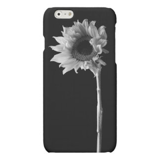 Sunflower - Black and White Photograph Matte iPhone 6 Case