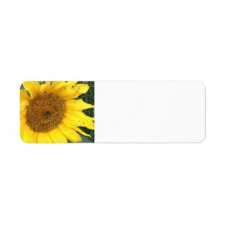 Sunflower Blank labels