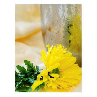 Sunflower Blank Postcard