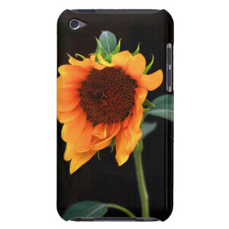 Sunflower bloom barely there iPod cover