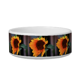 Sunflower bloom bowl