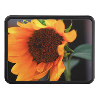 Sunflower bloom hitch covers