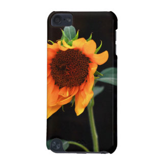 Sunflower bloom iPod touch 5G case