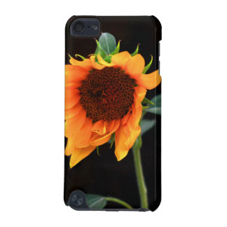 Sunflower bloom iPod touch (5th generation) cover