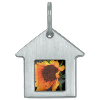 Sunflower bloom pet name tag