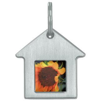 Sunflower bloom pet tag
