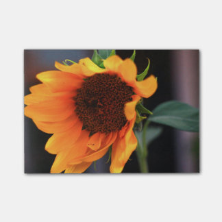 Sunflower bloom post-it® notes