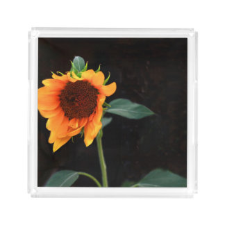 Sunflower bloom serving tray