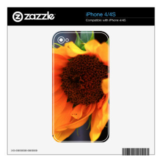 Sunflower bloom skins for the iPhone 4S