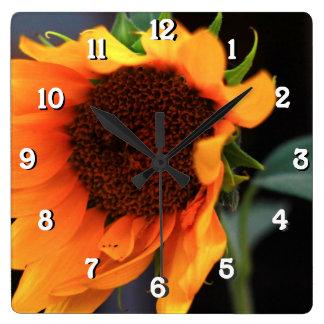 Sunflower bloom square wall clocks