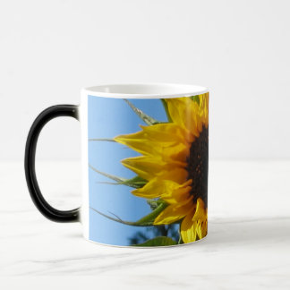 Sunflower - Blue & White Morphing Mug
