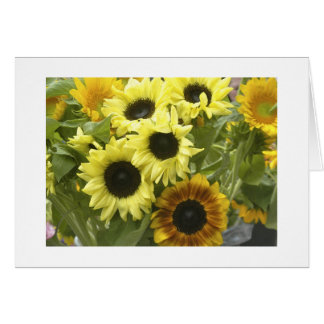Sunflower Bouquet Greeting Cards