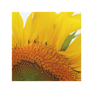 Sunflower Canvas Print Design Four