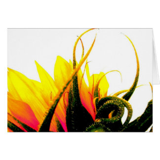Sunflower Card Large...
