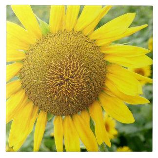 Sunflower Ceramic Tile 6 inch