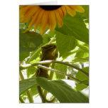 Sunflower & Chipmunk Greeting Card