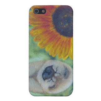 Sunflower Chow Chow iPhone SE/5/5s Cover
