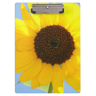 Sunflower Clipboard