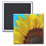Sunflower close up magnet