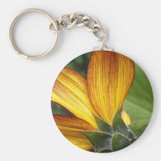 Sunflower closeup keychains