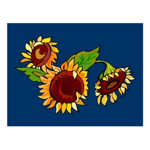 Sunflower Cluster Postcard