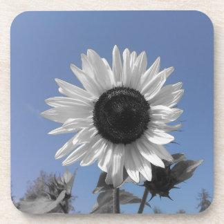 Sunflower Color Splash Beverage Coaster