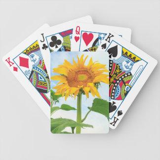Sunflower, community garden, Moses Lake, WA, USA Bicycle Playing Cards