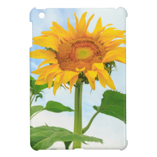 Sunflower, community garden, Moses Lake, WA, USA iPad Mini Case