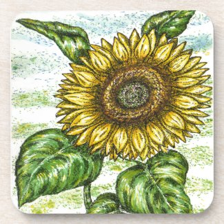 the meaning symbolism of sunflowers sunflower coaster. Black Bedroom Furniture Sets. Home Design Ideas