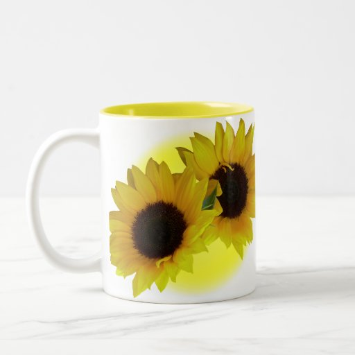 how to grow a sunflower in a cup