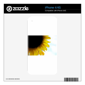 Sunflower Decal For The iPhone 4