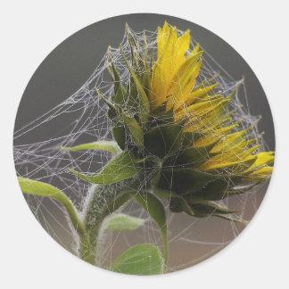 Sunflower Decorated By A Spiderweb Sticker
