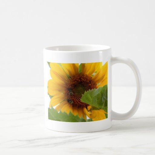 Sunflower Delight Classic White Coffee Mug