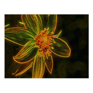 Sunflower Digital Art Flower Photography Postcard