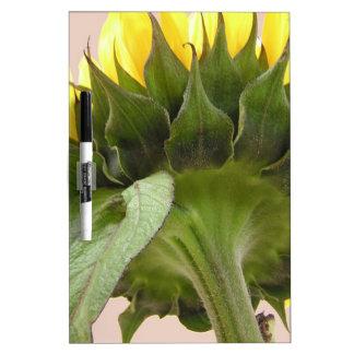 Sunflower Dry-Erase Whiteboard