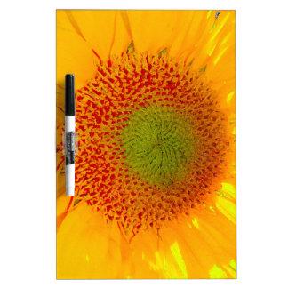 Sunflower Dry Erase White Board